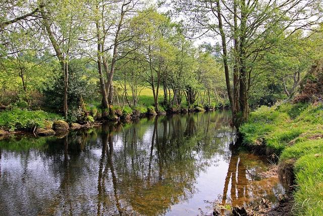 Chagford River