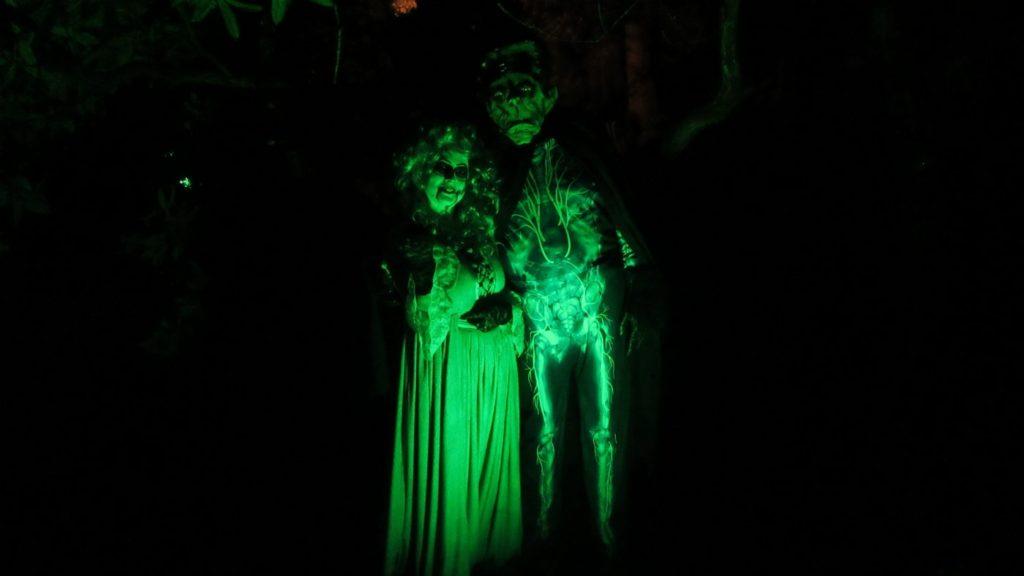 Creepy Dolls at Dunster
