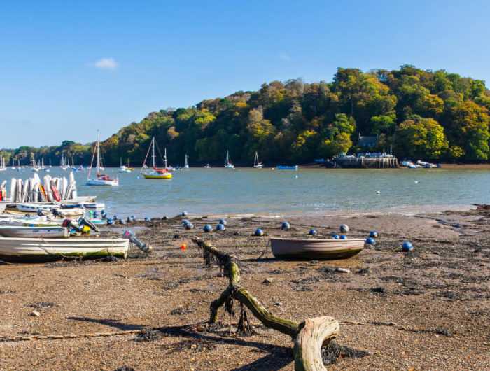 Image of Dittisham Quay and Jetty with Greenway in the background