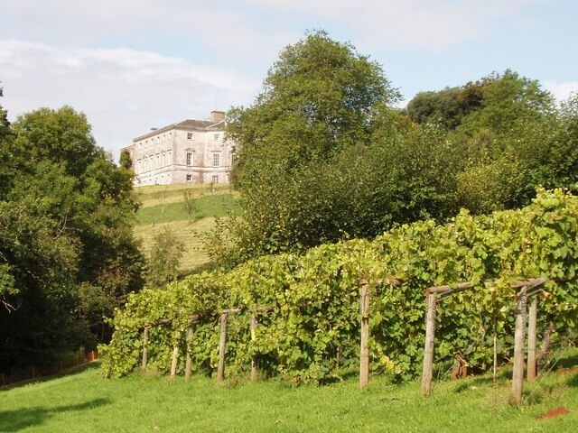 Sharpham House and Vineyard Totnes Devon
