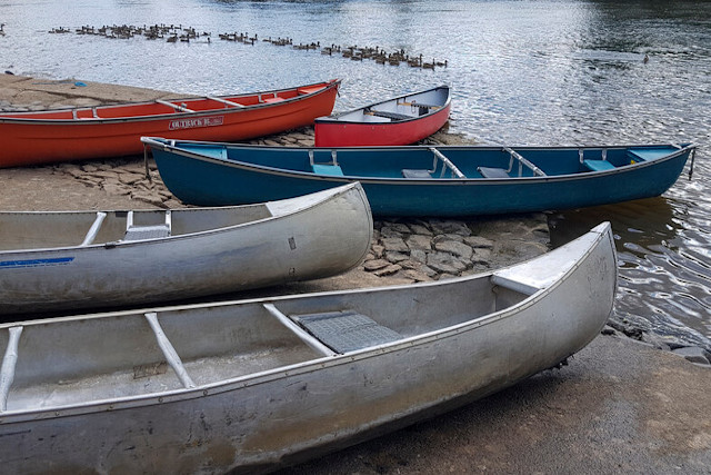 Canoes at side of river