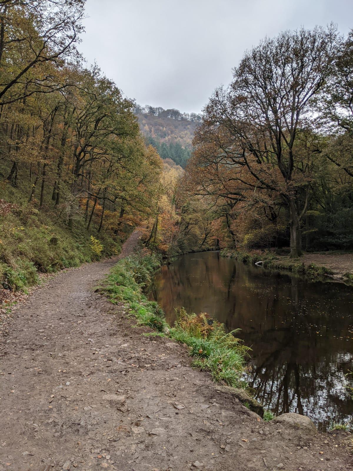 Fingle Bridge walking route