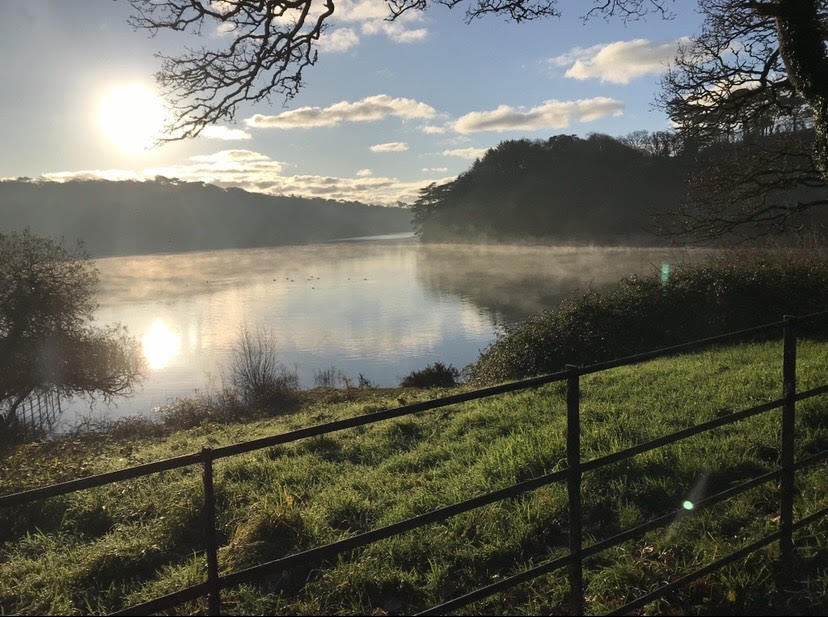 Penrose - one of the Top 5 Spring Walks in Cornwall