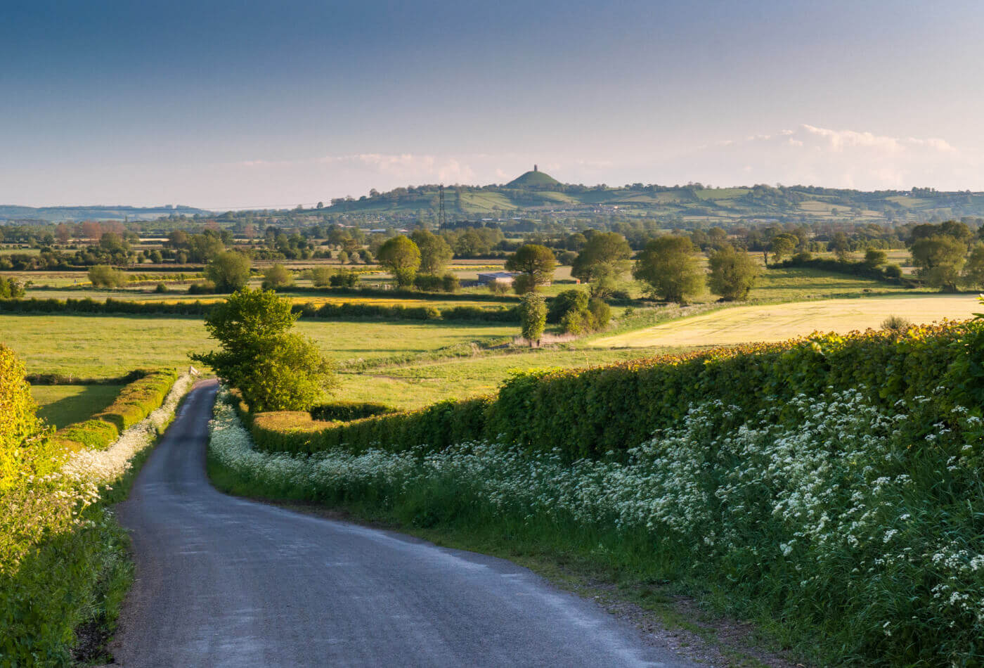 Somerset Levels with Glastonbury Tor in the background.